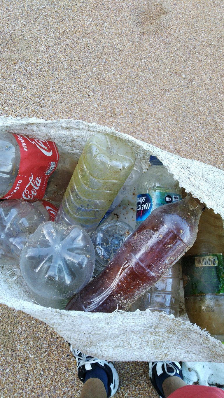 Beach Cleanup World Oceans Day 2021