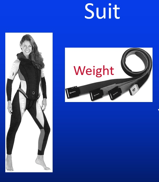 Weight-and-thickness-of-Wetsuit