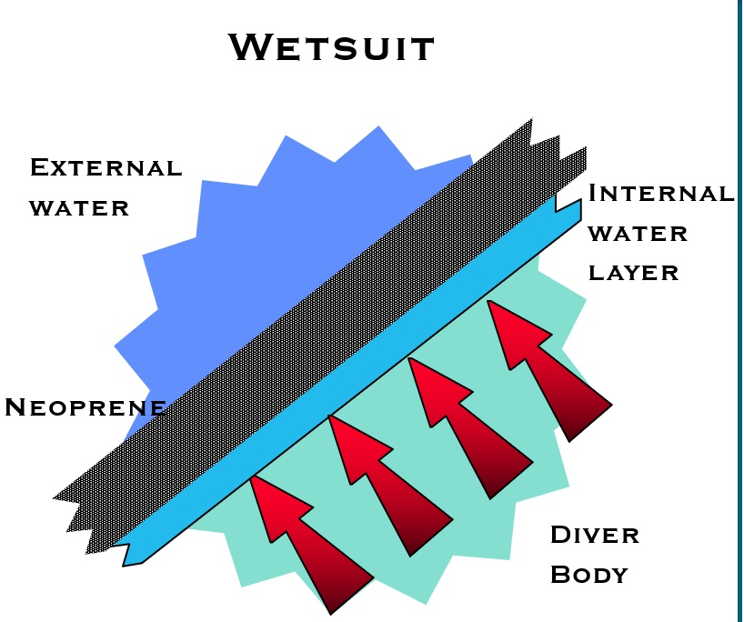 Wetsuit-function