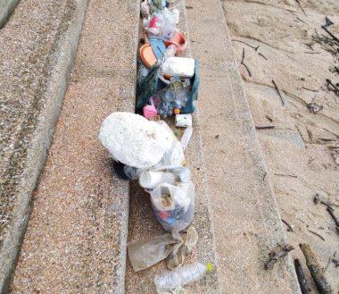 Beach Cleanup World Oceans Day Welt Ozean Tag 2021